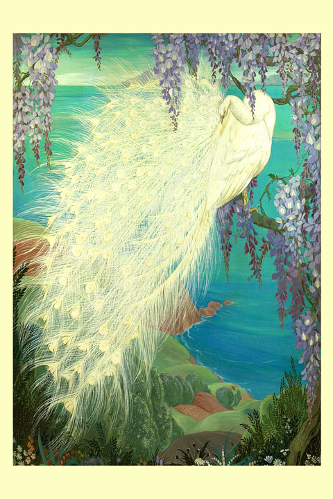 Peacock Bird New Orleans Ocean Sea Flowers Vintage Poster Repro FREE SHIPPING